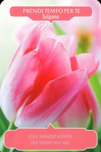 4-tulipano-copia