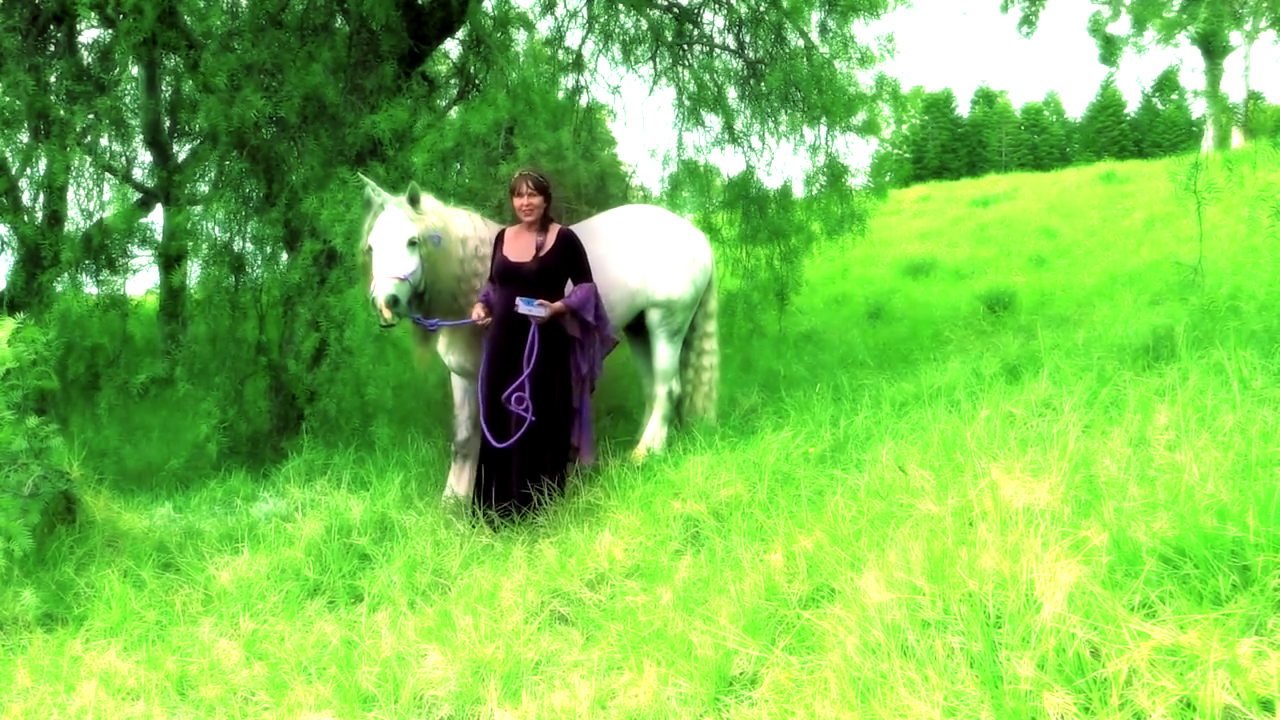 doreen-virtue-unicorno