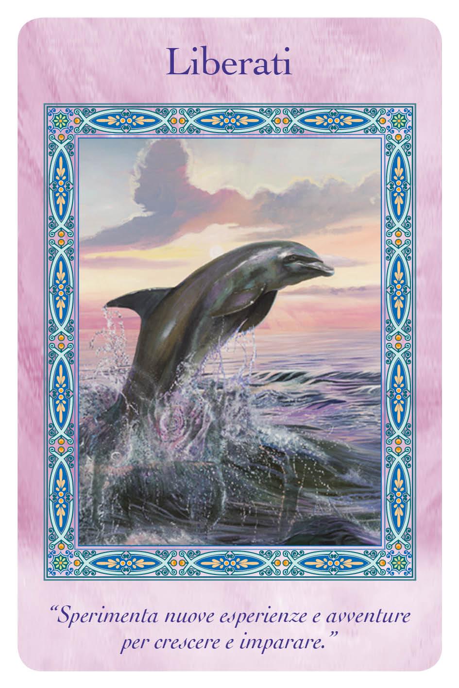 sirene_delfini_CARDS_20